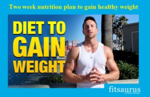 Two-week-nutrition-plan-to-gain-healthy-weight-fitsaurus