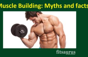Muscle Building Myths and facts-fitsaurus