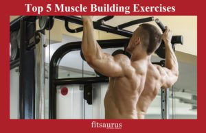 Top 5 Muscle Building Exercises-fitsaurus